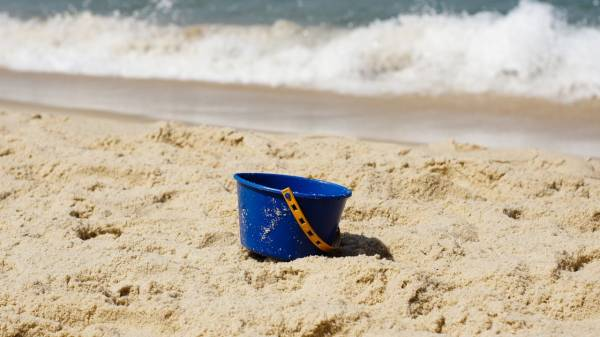 Birds, buckets & beaches: An analogy about genomics